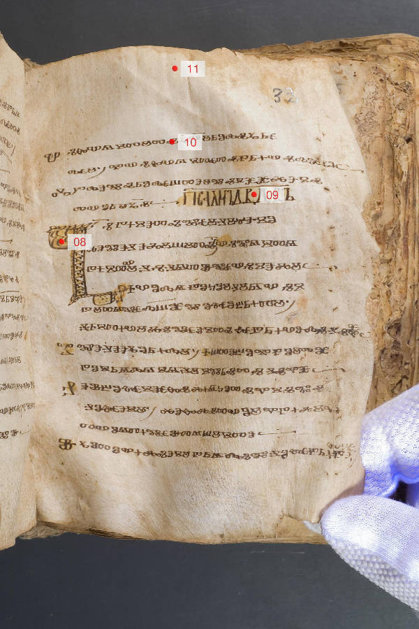 Psalterium Demetrii –  Preparation for XFR-analysis